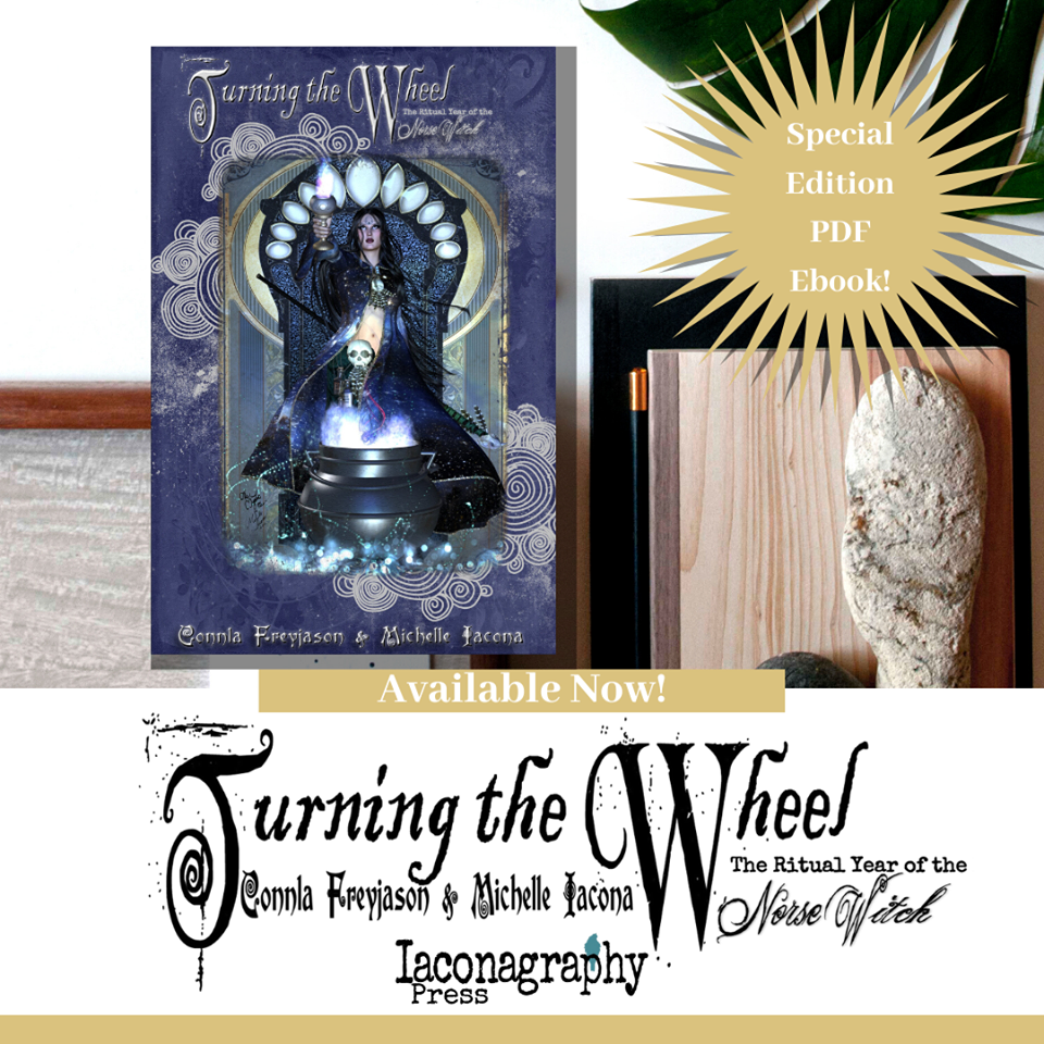 Turning the Wheel book cover michelleiacona.com